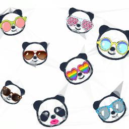 freetoedit remix panda shades glasses