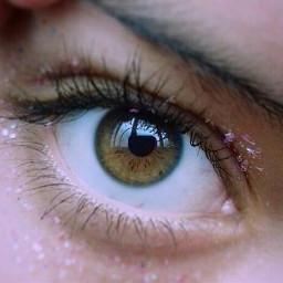 baby eye eyes eyebrows eyecolor days
