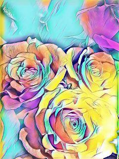 roses rainbow catoon