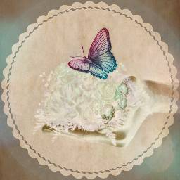 FreeToEdit doubleexpousure myeditoffreetoedit hand flowers butterfly feelings spirit remixed