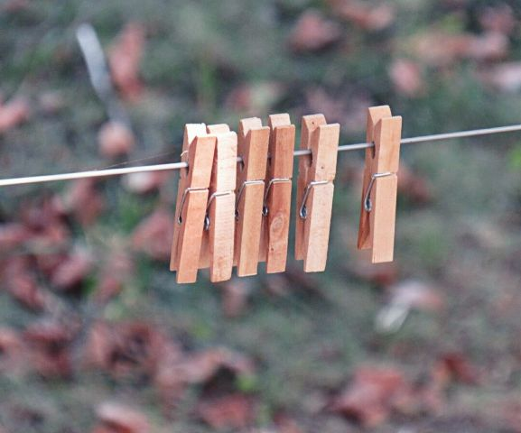 photography minimalism minimal clothespins leaves freetoedit