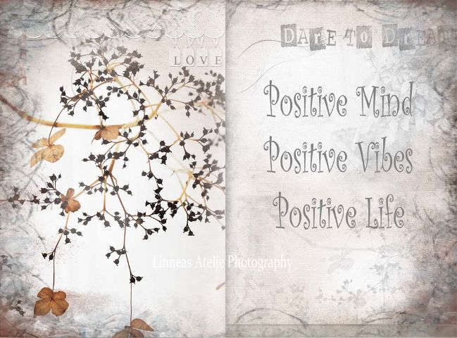 lifestyle quote positive positivethoughts grey