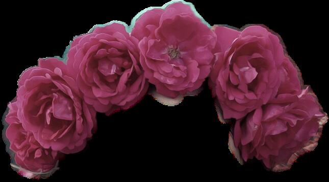#flower #flowercrown