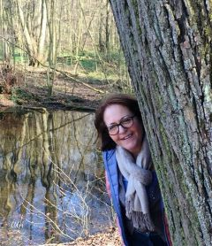 @csefi nature mirroring tree photographie