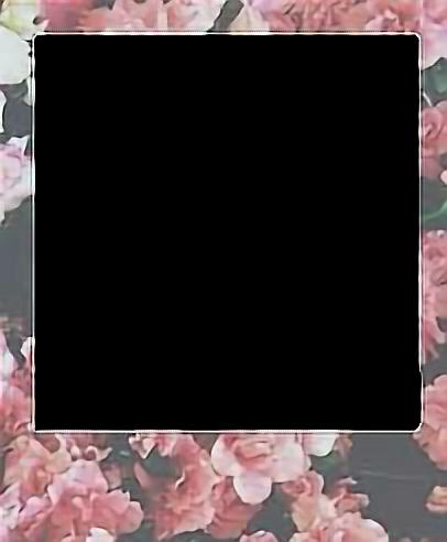 #frames #polaroid