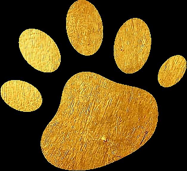 #pets & animals  #dogs #oro #freetoedit
