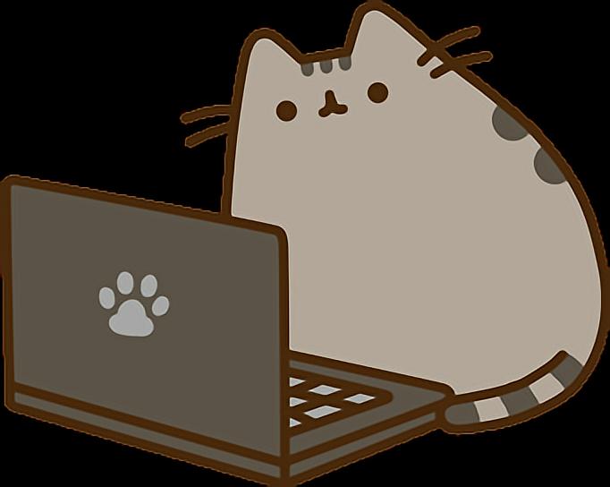 Computer Pusheen Laptop Cat