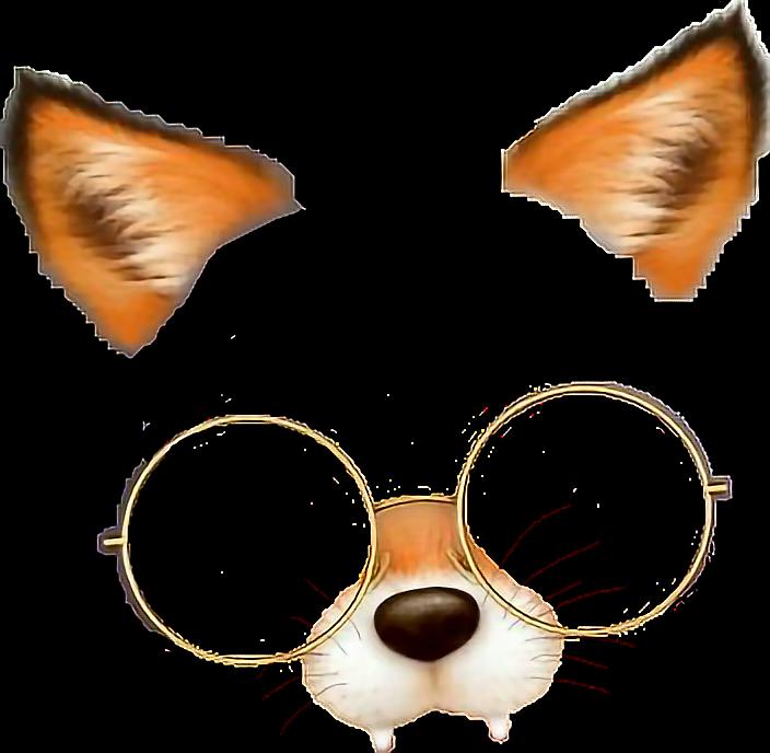 Cat Eye Glasses Makeup