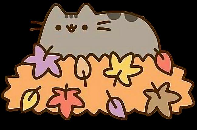 kitten harness
